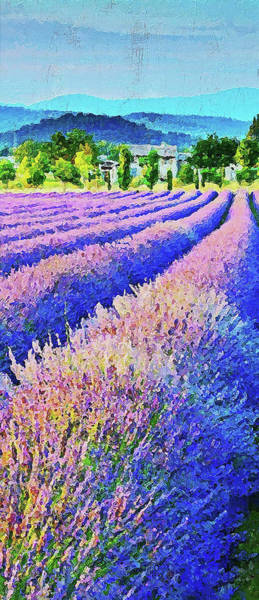 Painting - Lavender Fields - 08 by Andrea Mazzocchetti