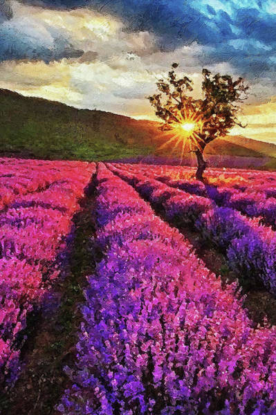 Painting - Lavender Fields - 09 by Andrea Mazzocchetti