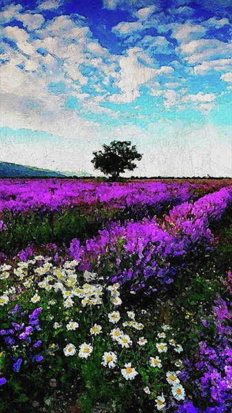 Painting - Lavender Fields - 12 by Andrea Mazzocchetti