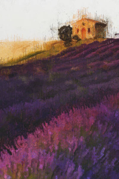 Painting - Lavender Fields - 13 by Andrea Mazzocchetti