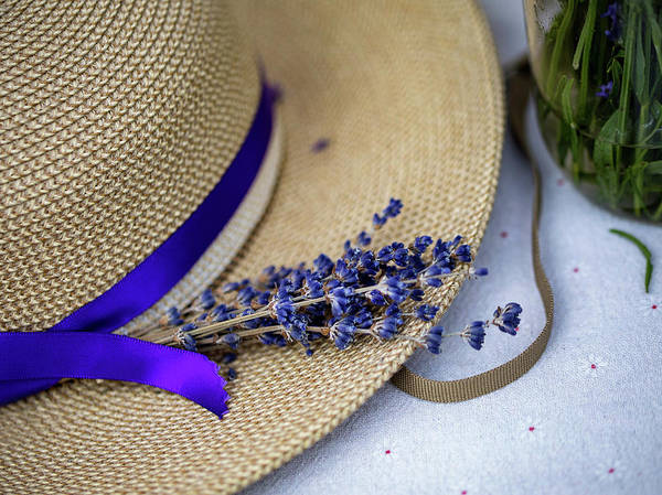 Photograph - Lavender Hat by Rebecca Cozart