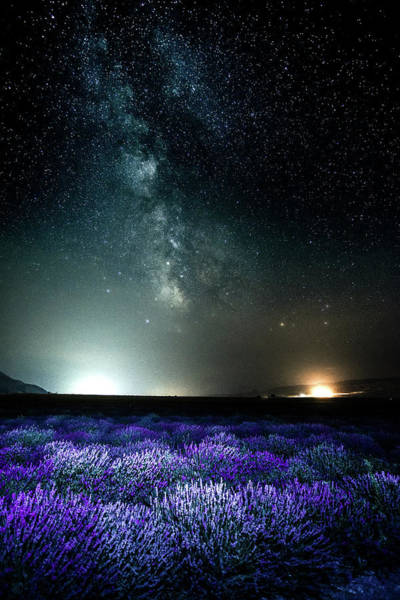Photograph - Lavender Milky Way by Bryan Carter