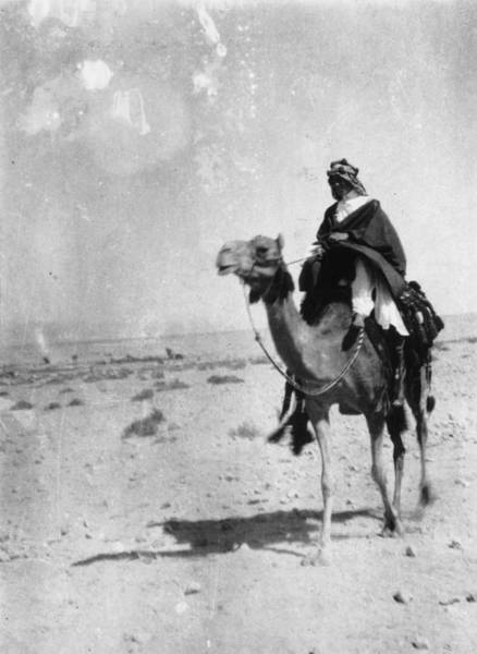 Desert Photograph - Lawrence Of Arabia by Hulton Archive