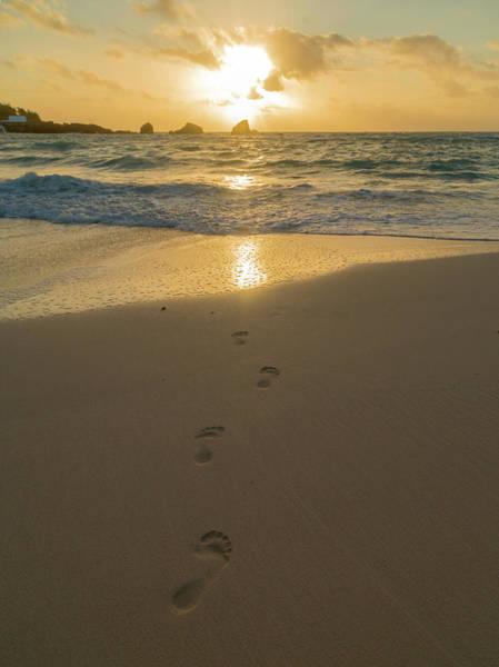 Wall Art - Photograph - Leading To The Light Coastal Sunrise by Betsy Knapp