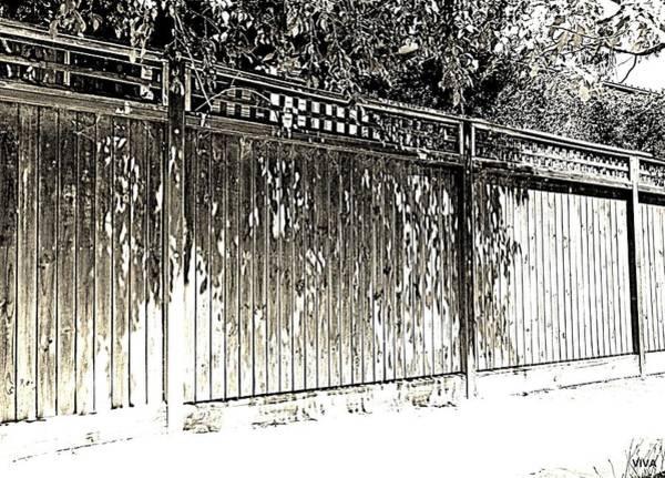 Photograph - Leafy Suburban Boundary by VIVA Anderson
