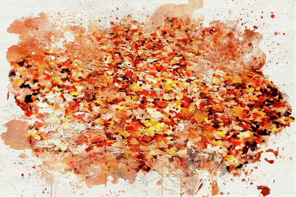 Photograph - Autumn Leaves 2 by Marilyn Wilson