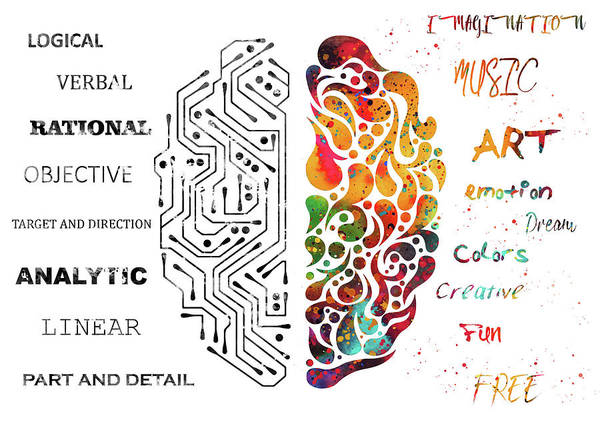 Wall Art - Digital Art - Left And Right Brain Function by Erzebet S