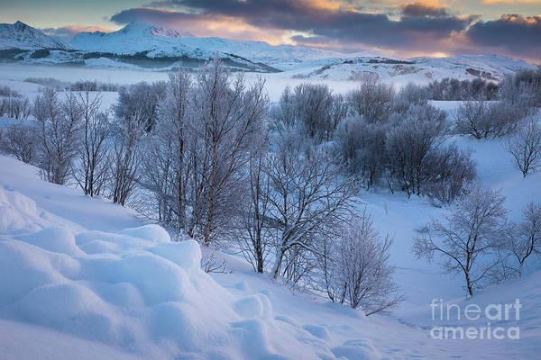 Wall Art - Photograph - Leknes Frozen Landscape by Inge Johnsson