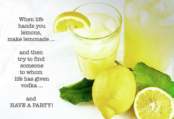 Saying Photograph - Lemonade And Vodka by DiFigiano Photography