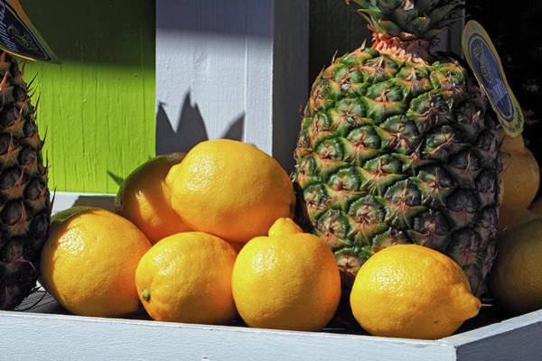 Photograph - Lemons And Pineapples Together by Bill Swartwout Photography