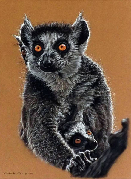 Painting - Lemurs by Linda Becker