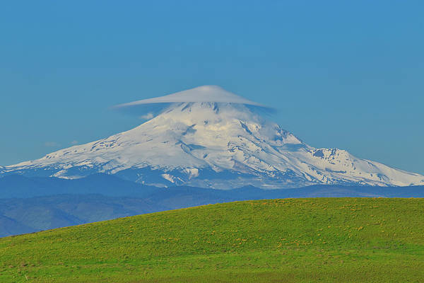 Wall Art - Photograph - Lenticular Cloud On Mount Hood by Lynn Hopwood