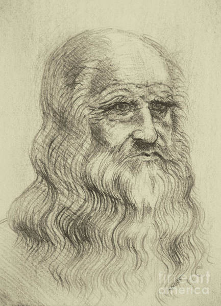 Pastel - Leonardo Da Vinci By George Wood by Karen Adams