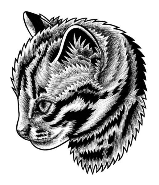 Kitten Drawing - Leopard Cat Kitten - Ink Illustration by Loren Dowding