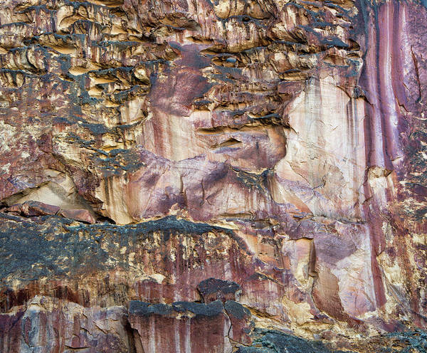 Photograph - Leslie Gulch Cliff by Leland D Howard