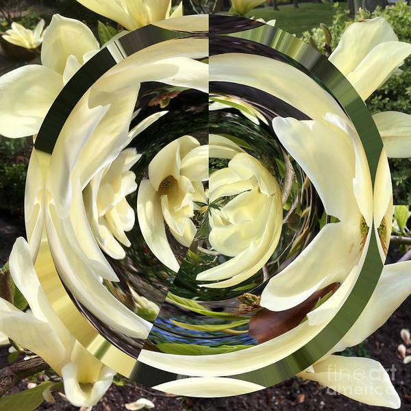 Wall Art - Photograph - Leslie's Magnolia  by Merice Ewart
