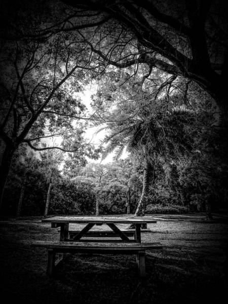 Photograph - Let The Light In by Robert Stanhope