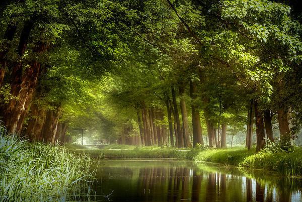 Photograph - Let The Spring Begin by Kees Van Dongen