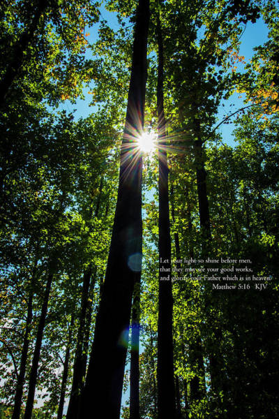 Wall Art - Photograph - Let Your Light Shine by Denise Harty