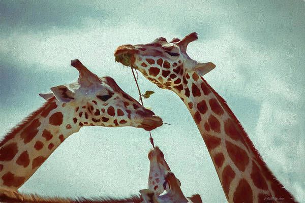 Painting - Lets Share - Giraffe - Painting by Ericamaxine Price