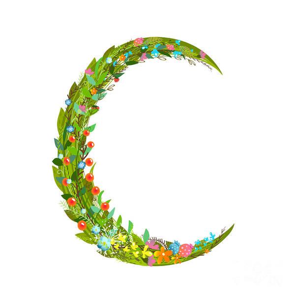 Write Wall Art - Digital Art - Letter C Floral Latin Decorative by Popmarleo