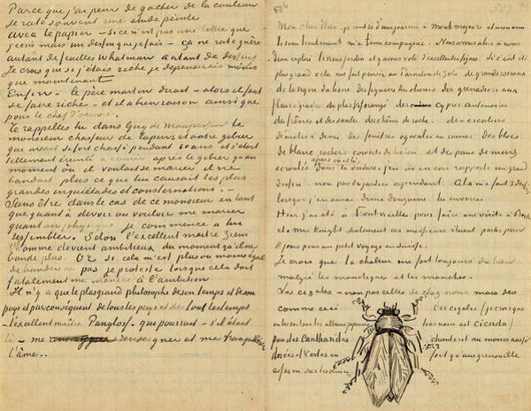 Cicada Wall Art - Painting - Letter From Vincent Van Gogh To Theo Van Gogh With Sketch Of Cicada by Vincent Van Gogh