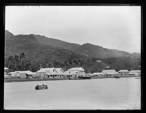 Archipelago Painting -  Levuka  Fiji  14 July 1884 New Zealand By Burton Brothers Studio  Alfred Burton 2 by Celestial Images