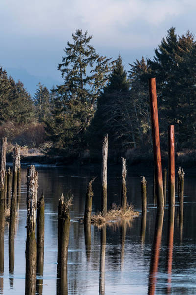 Photograph - Lewis And Clark River Pilings by Robert Potts