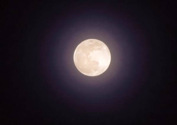 Photograph - Libra Full Moon by Judy Kennedy
