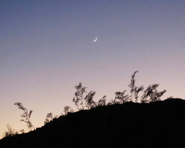 Photograph - Libra Twilight Crescent by Judy Kennedy