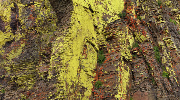 Basalt Photograph - Lichen Cliff Panoramic by Leland D Howard