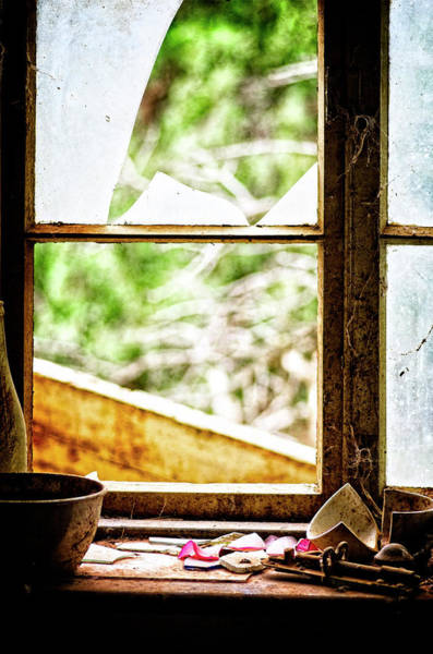Wall Art - Photograph - Life After People by Wayne Sherriff