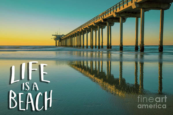 Wall Art - Photograph - Life Is A Beach Scripps Pier La Jolla San Diego by Edward Fielding
