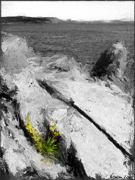 Digital Art - Life On The Rocks by Rein Nomm