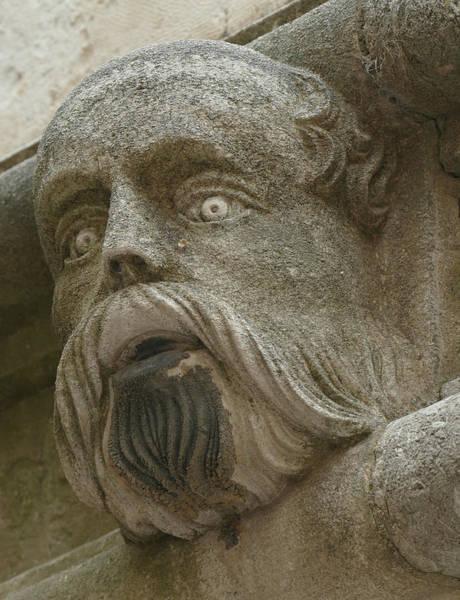 Photograph -  Life Sized Sculptures Of Human Heads by Steve Estvanik