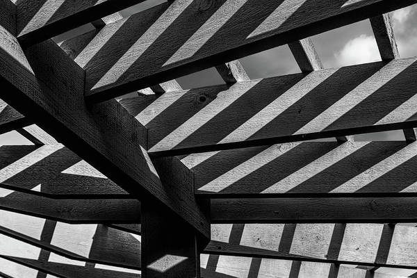Arbor Photograph - Light And Shadow Abstract by Tom Mc Nemar