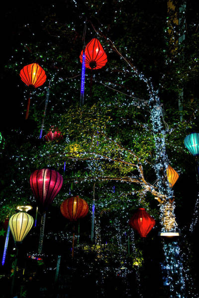 Wall Art - Photograph - Light Decorations by Tom Norring