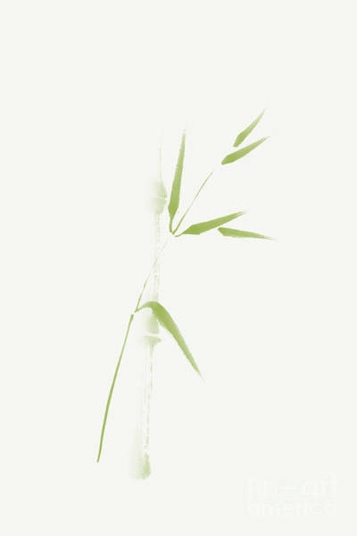 Single Leaf Mixed Media - Light Green Bamboo Branch Artistic Design On Off-white by Awen Fine Art Prints