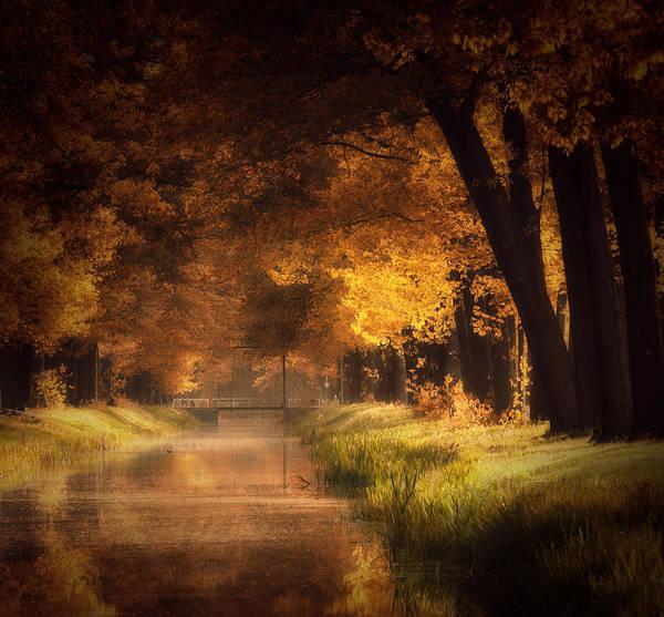 Photograph - Light My Fire by Kees Van Dongen