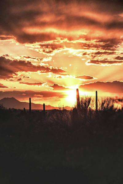 Photograph - Light Of Arizona by Chance Kafka