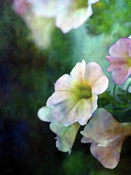 Photograph - Light Petunias 6600 Idp_2 by Steven Ward