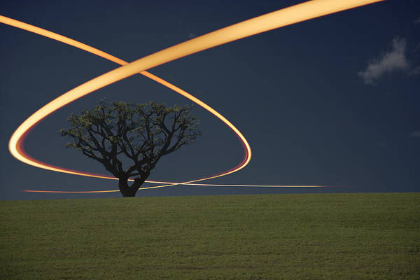 Horizontal Landscape Photograph - Light Trails Around Tree by Paul Taylor