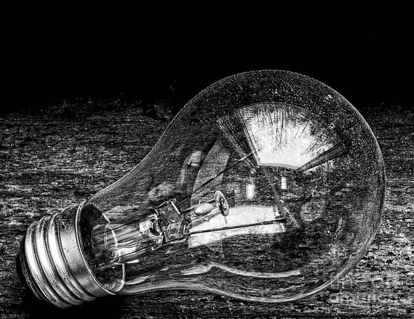 Photograph - Lightbulb by Edward Fielding