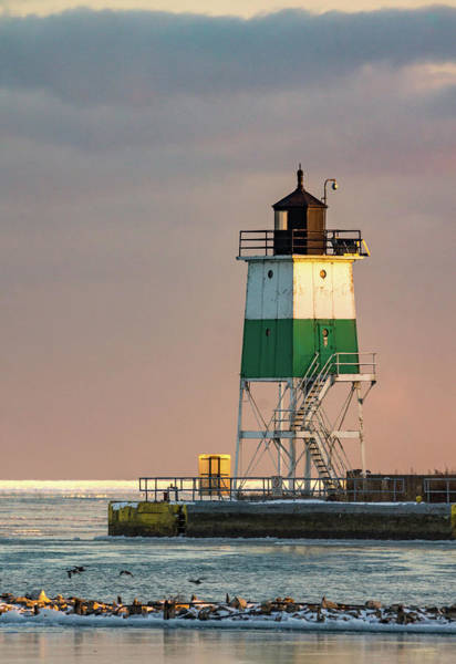 Photograph - Lighthouse Portrait by Framing Places