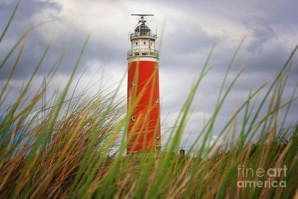Photograph - Lighthouse Texel by Angela Doelling AD DESIGN Photo and PhotoArt
