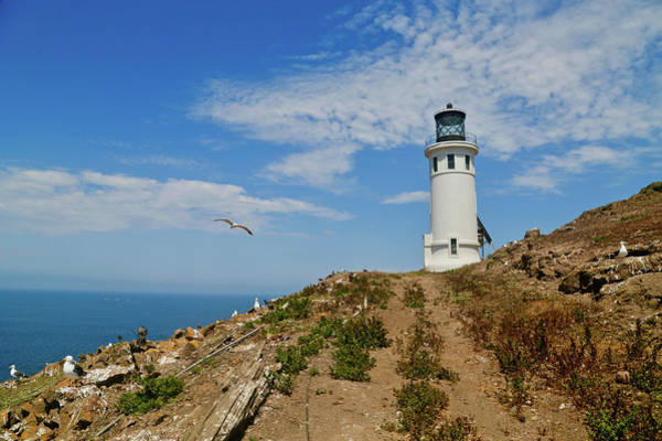 Wall Art - Photograph - Lighthouse Vi by Yellow Caf�
