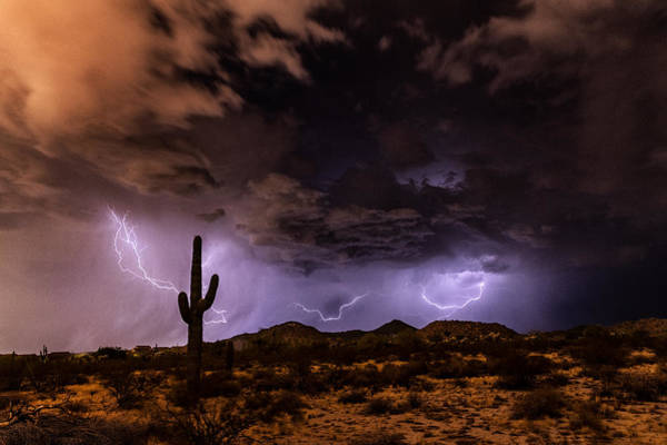 Wall Art - Photograph - Lighting Up The Desert Nights  by Saija Lehtonen