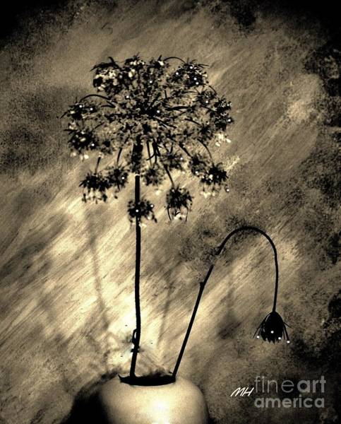 Wall Art - Digital Art - Lightning Flower by Marsha Heiken