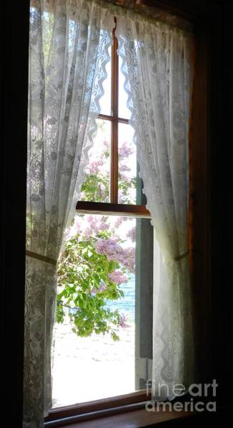 Wall Art - Photograph - Lilacs By Lighthouse Window by Snapshot Studio
