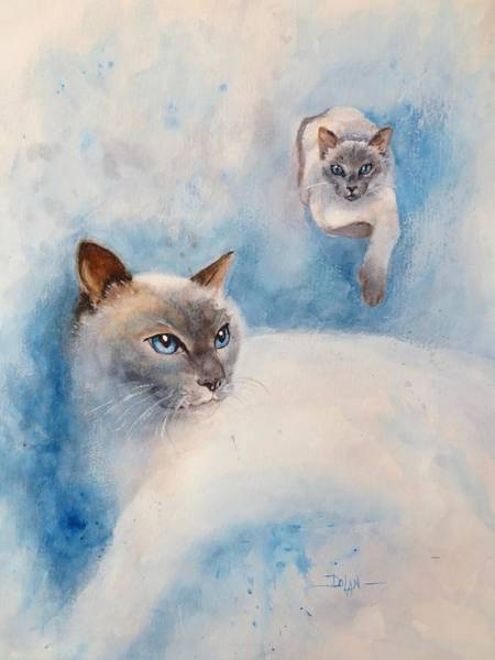Painting - Lily Cat  by Pat Dolan
